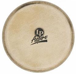 LP - A663A Bongo Head Aspire 6 3/4'