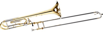 Carol Brass - CTB-6219-YSS-YNNN-N3