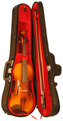 Karl Höfner - Allegro 3/4 Violin Outfit