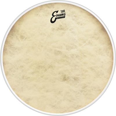 Evans - 16' EQ4 Calftone Bass / Tom