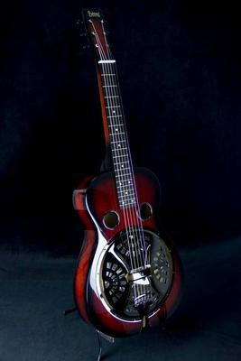 Beard Guitars - Vintage R SN RSB