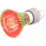 LED lambid